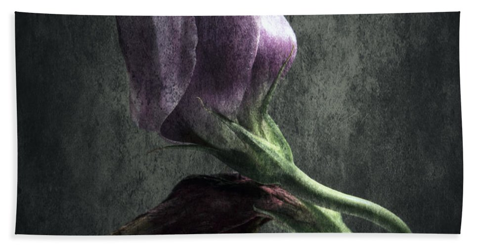 Back Beach Towel featuring the photograph Dead Or Alive by Stelios Kleanthous
