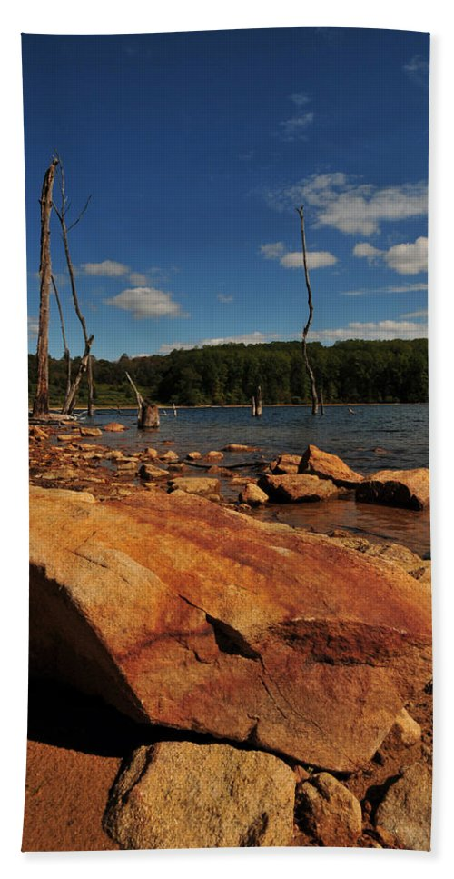 Merrill Creek Beach Towel featuring the photograph Dead Trees And Rocks by Paul Ward
