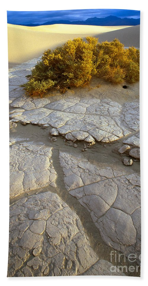 America Beach Towel featuring the photograph Death Valley Mudflat by Inge Johnsson