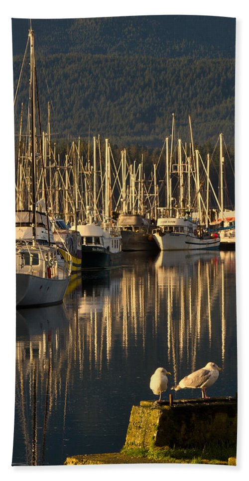 Water Beach Towel featuring the photograph Deep Bay by Randy Hall