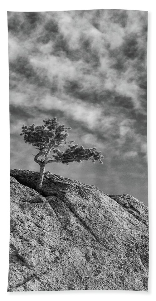 Guy Whiteley Photography Beach Towel featuring the photograph Defiant II by Guy Whiteley