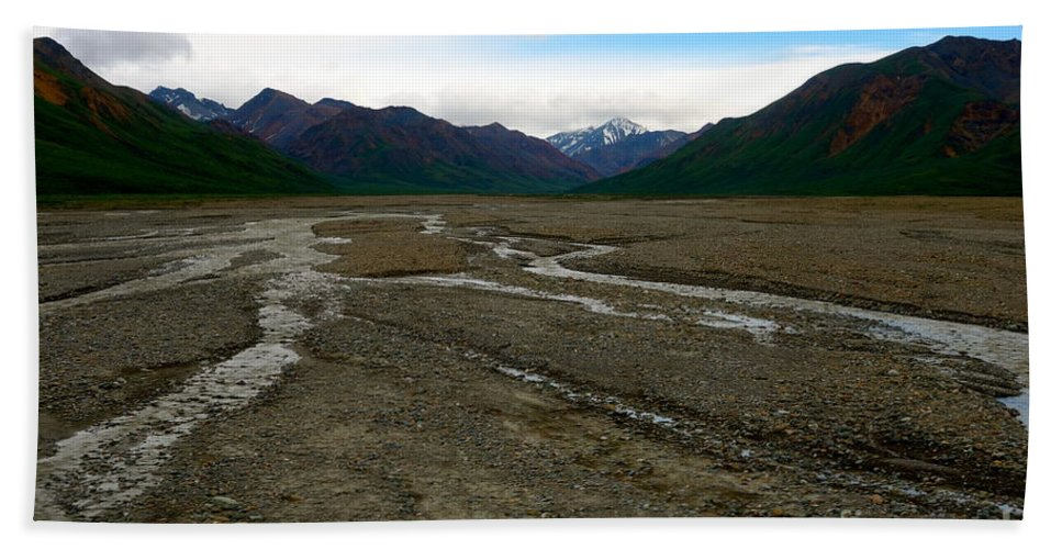 Denali National Park Beach Towel featuring the photograph Denali National Park 3 by Jacqueline Athmann