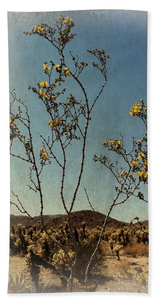 Desert Beach Towel featuring the photograph Desert Bloom by Linda Dunn