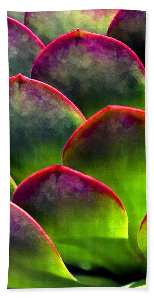 Cactus Beach Towel featuring the painting Desert Succulent In Bright Sun And Shade by Elaine Plesser