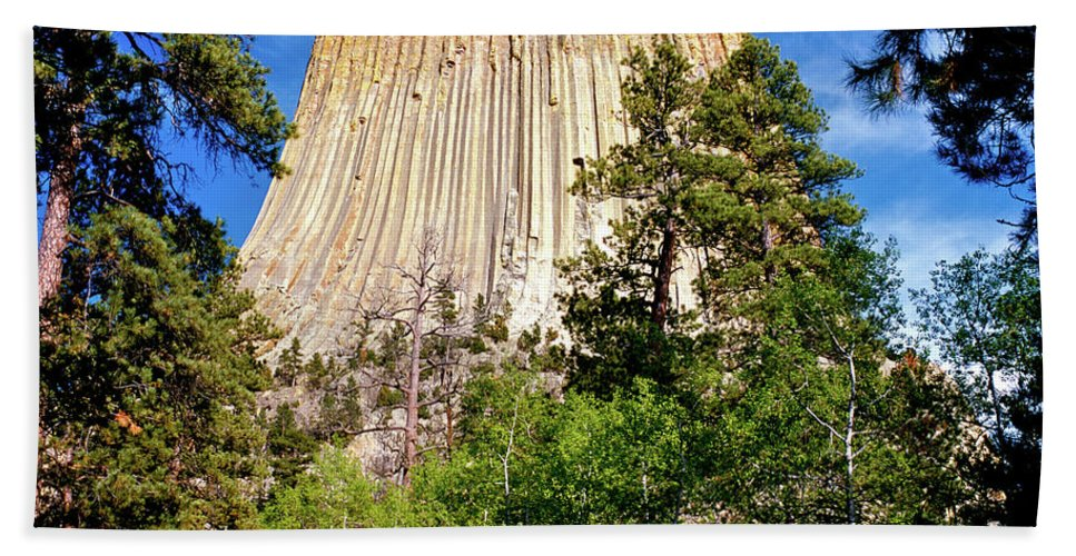 Wyoming Beach Towel featuring the photograph Devil's Tower Through The Trees by Ed Riche