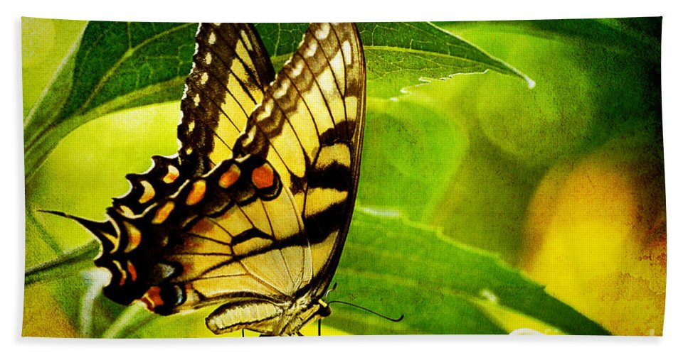 Butterfly Beach Towel featuring the photograph Dining With A Friend by Lois Bryan
