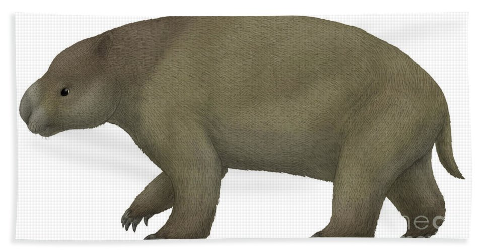 Animal Fur Beach Towel featuring the digital art Diprotodon, The Largest Know Marsupial by Vitor Silva