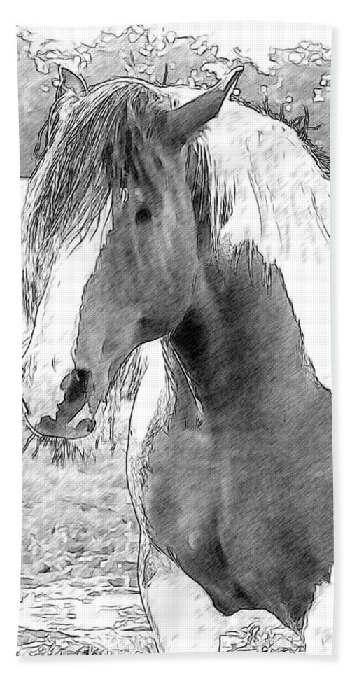 Horse Beach Towel featuring the photograph Don Juan by Alice Gipson