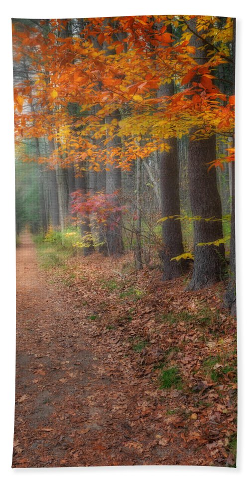 Hiking Beach Towel featuring the photograph Down The Trail by Bill Wakeley