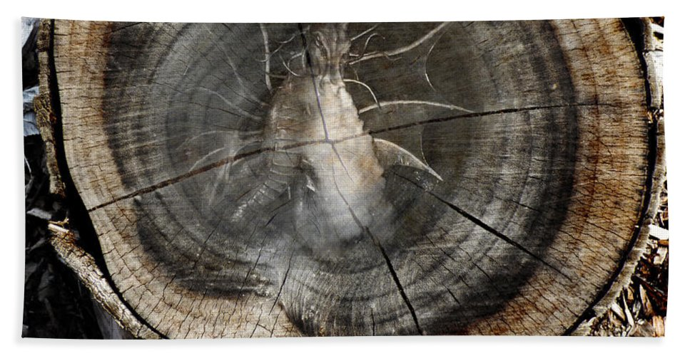 Art Beach Towel featuring the photograph Dragon Wood by Steve Taylor