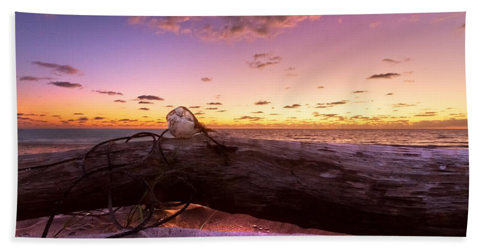 Clouds Beach Towel featuring the photograph Driftwood by Debra and Dave Vanderlaan