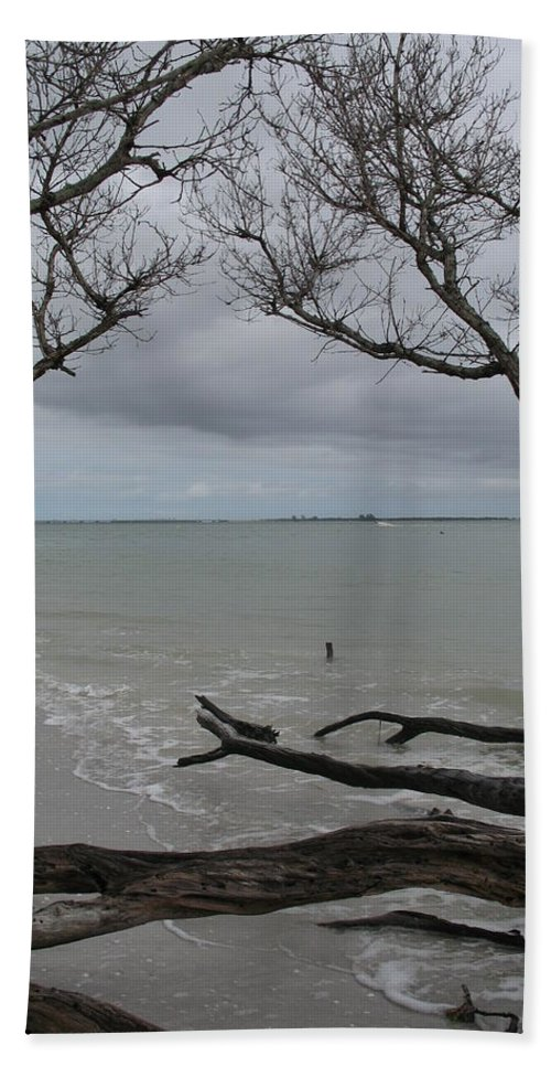 Beach Beach Towel featuring the photograph Driftwood On The Beach by Christiane Schulze Art And Photography