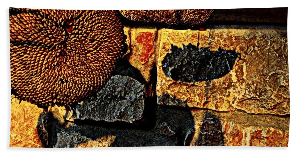Earthy Beach Towel featuring the photograph Drying Out by Chris Berry