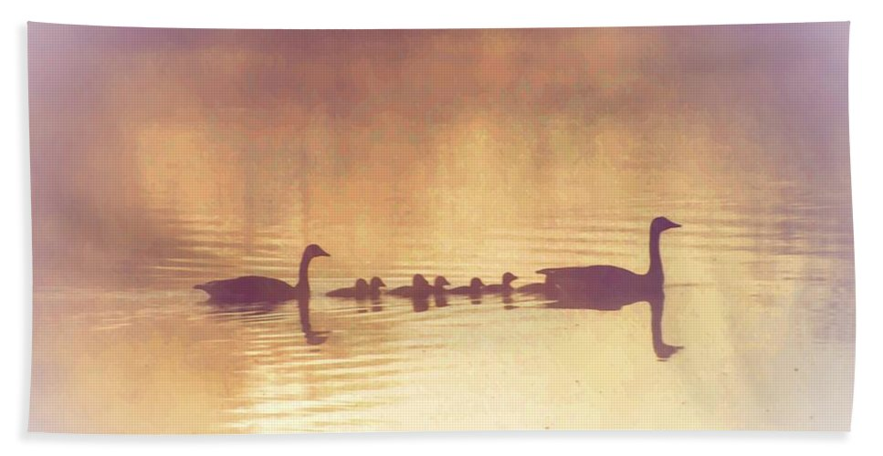 Duck Beach Towel featuring the photograph Duck Family by Bill Cannon