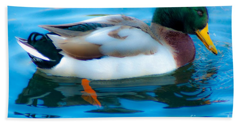 Mallard Duck Beach Towel featuring the photograph Duck Glide by Dale Powell