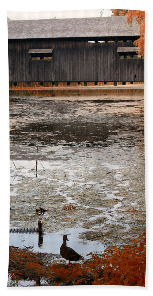 Covered Bridge Beach Towel featuring the photograph Ducking Under The Bridge by Jeff Folger