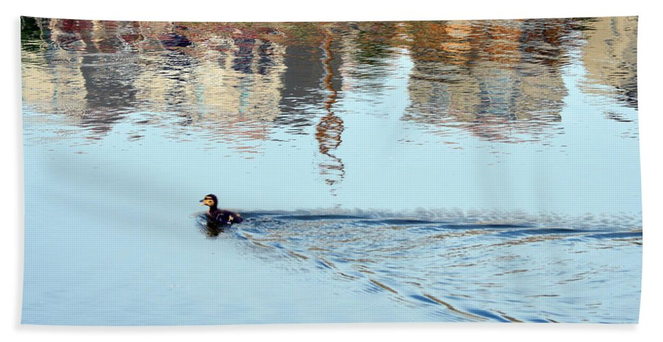 Duck Beach Towel featuring the photograph Duckling by Brent Dolliver