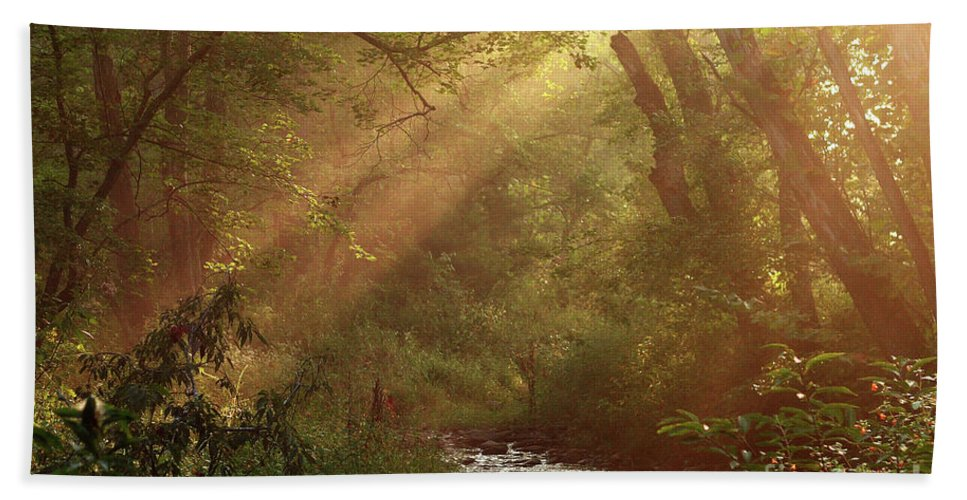 Sunlight Beach Towel featuring the photograph Eden...maybe. by Douglas Stucky