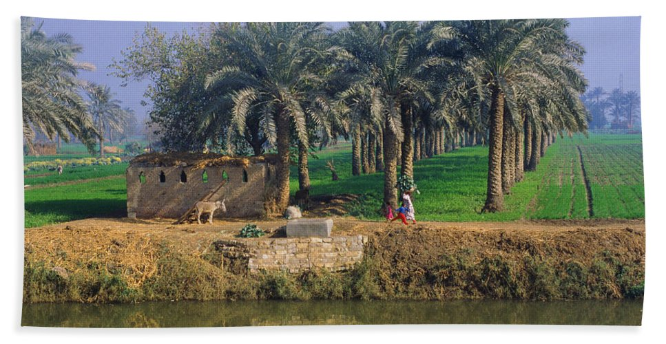 Egypt Beach Towel featuring the photograph Egyptian Village by Mark Greenberg