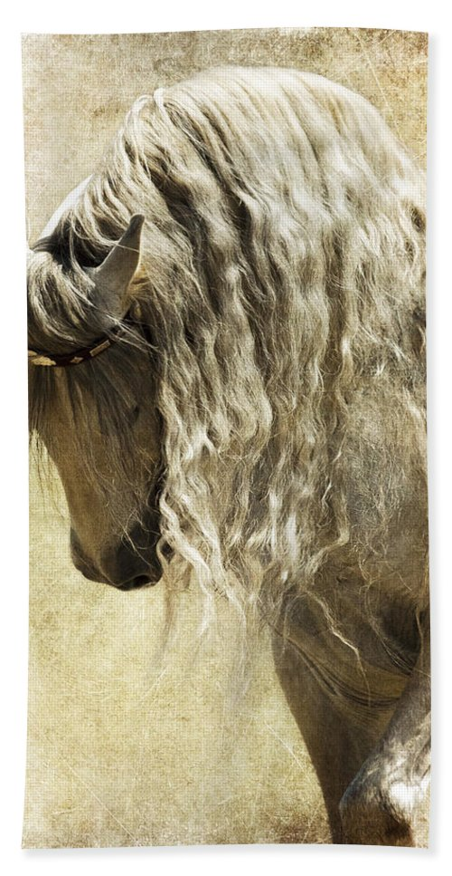 Elegance Beach Towel featuring the photograph Elegance by Wes and Dotty Weber