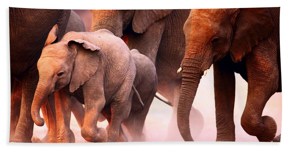 Wild Beach Sheet featuring the photograph Elephants Stampede by Johan Swanepoel