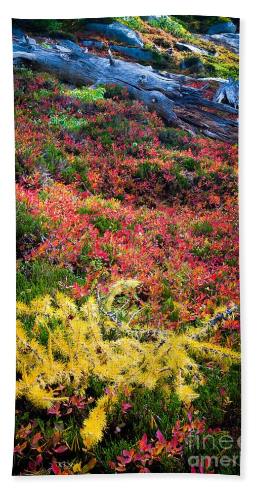 Alpine Lakes Wilderness Beach Towel featuring the photograph Enchanted Colors by Inge Johnsson