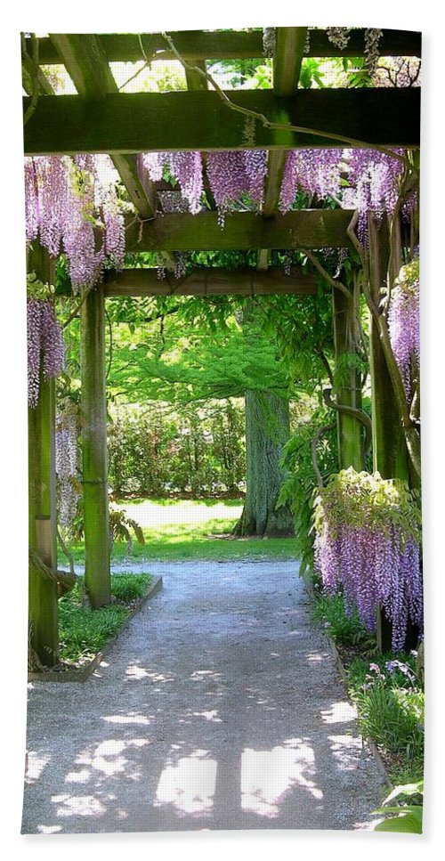 Purple Wisteria Beach Towel featuring the photograph Entranceway To Fantasyland by Susan Maxwell Schmidt