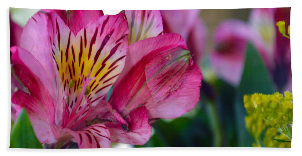 Exotic Beach Towel featuring the photograph Exotic Pink by Brent Dolliver