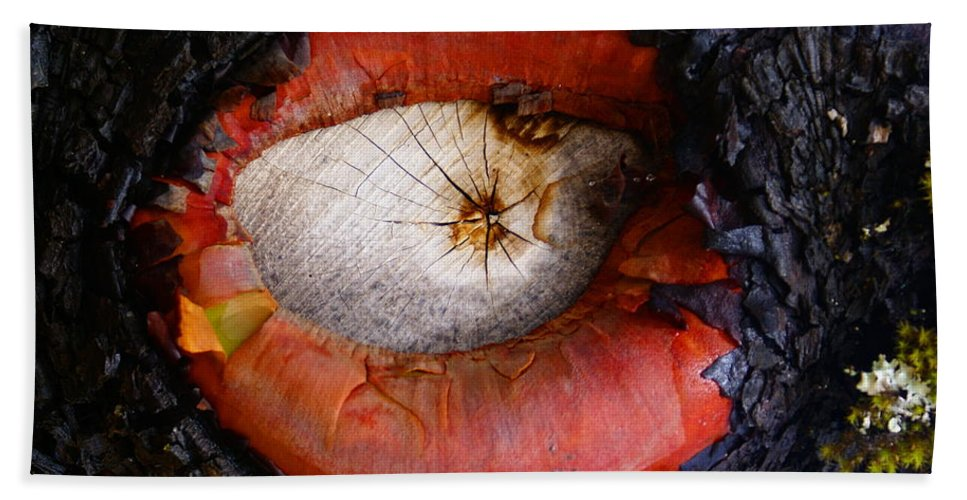 Madrone Beach Towel featuring the photograph Eye Of Madrone by Ben Upham III
