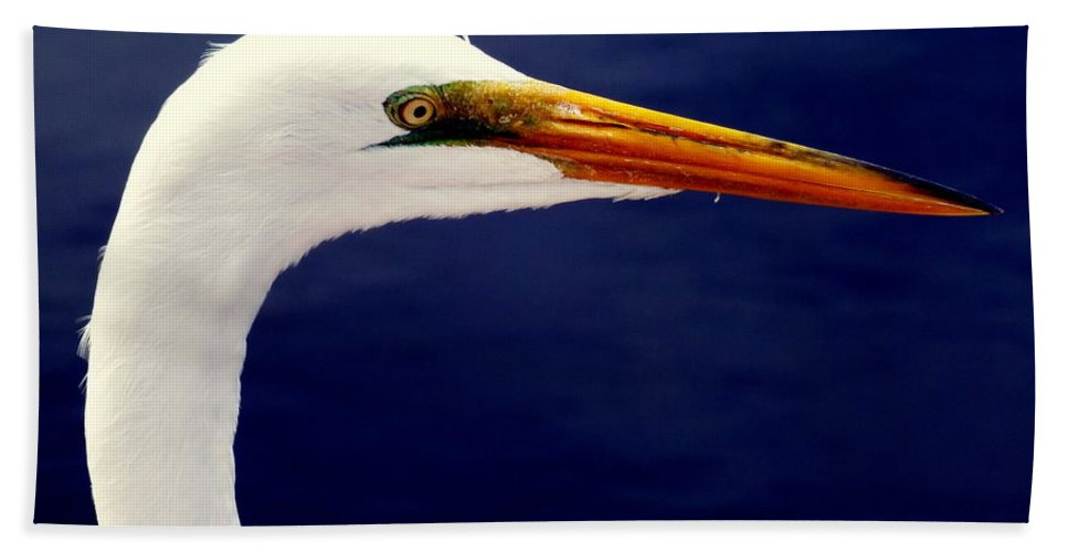 Birds Beach Towel featuring the photograph Eyes Of Steel by Karen Wiles
