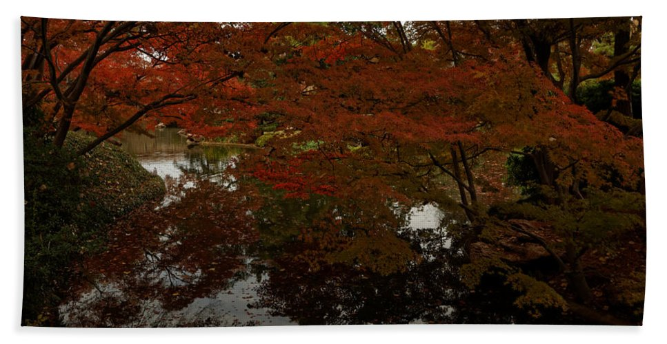 Autumn Beach Towel featuring the photograph Fall Reflections by Jonathan Davison