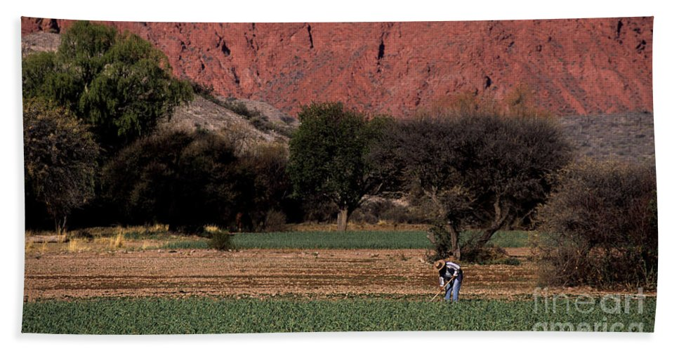 Argentina Beach Towel featuring the photograph Farmer In Field In Northern Argentina by James Brunker