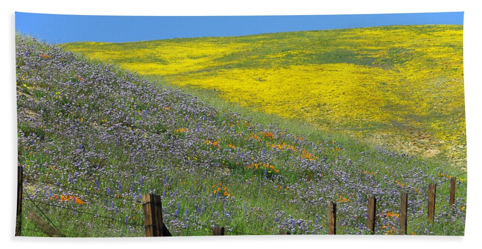 Gorman Beach Towel featuring the photograph Fenced In Flowers by Lynn Bauer