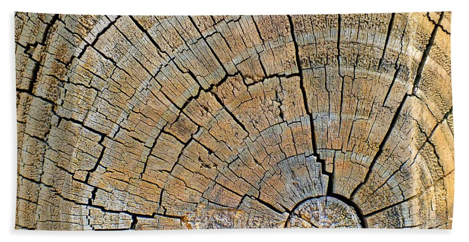 Wood Beach Towel featuring the photograph Fencepost Top 4 by Duane McCullough