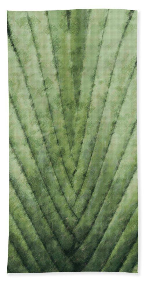 Dominican Republic Beach Towel featuring the digital art Fern - Chalk by David Lange
