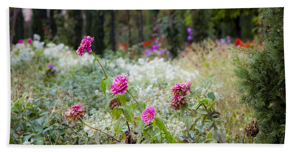 Flowers Beach Towel featuring the photograph Field Of Flowers On A Rainy Day by Madeline Ellis