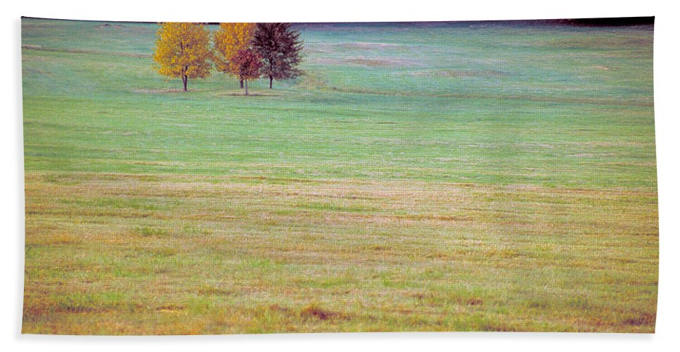 Arkansas Beach Towel featuring the photograph Field With Four Trees by Jim Murphy