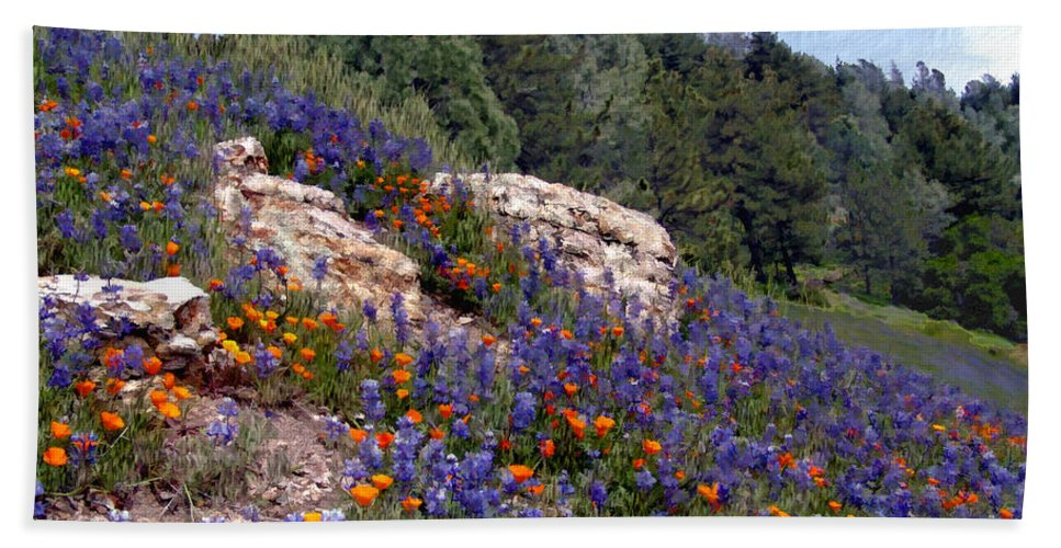 Flowers Beach Towel featuring the photograph Figueroa Mountain Splendor by Kurt Van Wagner