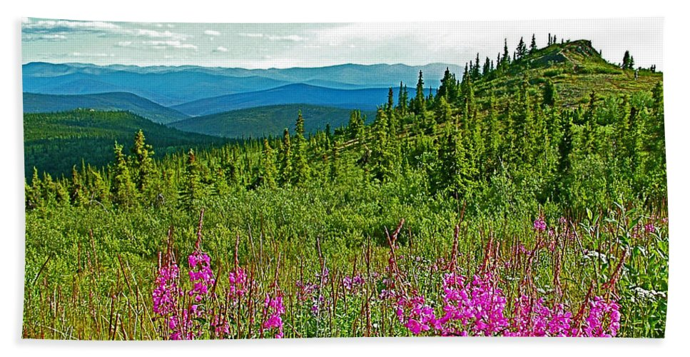 Fireweed Near Top Of The World Highway Beach Towel featuring the photograph Fireweed Near Top Of The World Highway-alaska by Ruth Hager