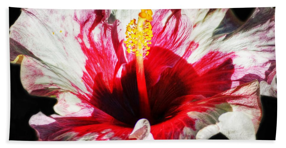 Heiko Beach Towel featuring the photograph Flaming Petals by Heiko Koehrer-Wagner