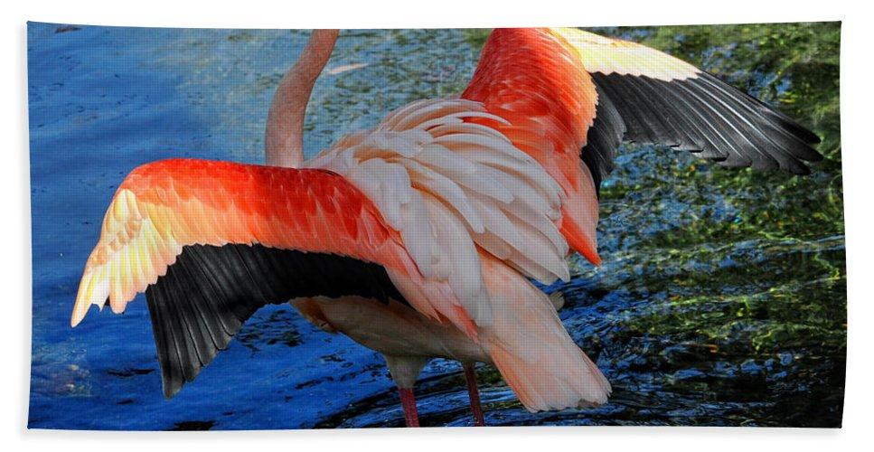 Flamingo Art Beach Towel featuring the digital art Flamingo Flight by Constance Woods