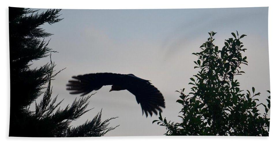 Flight Of The Black Crow Beach Towel featuring the photograph Flight Of The Black Crow by Maria Urso