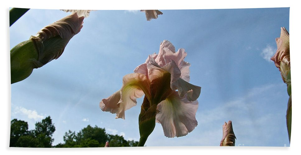 Flower Beach Towel featuring the photograph Floral Clouds by Susan Herber