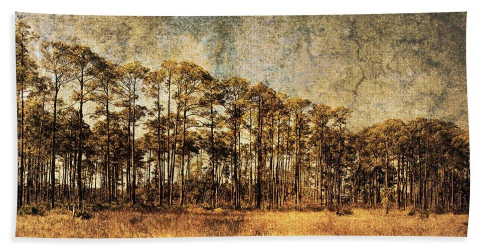 Art Beach Towel featuring the photograph Florida Pine 4 by Skip Nall