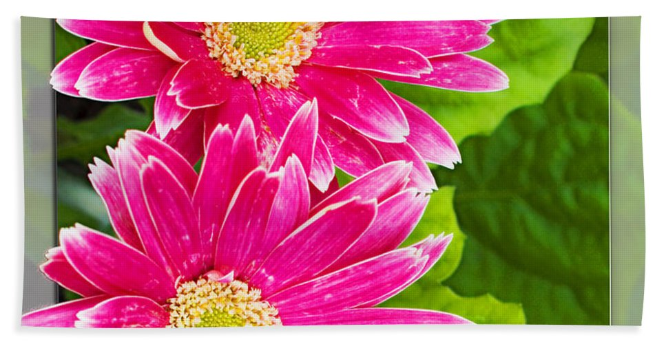 Flowers Beach Towel featuring the photograph Flower1 by Walter Herrit