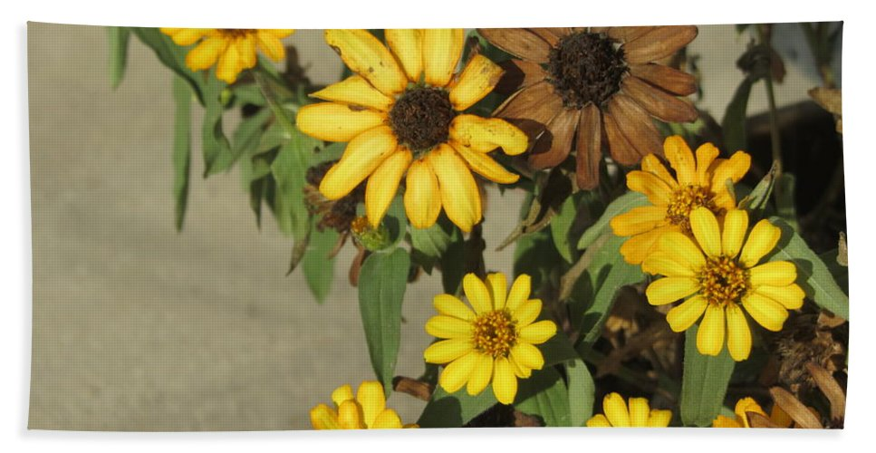 Flowers Beach Towel featuring the photograph Flowers in Fall 3 by Anita Burgermeister