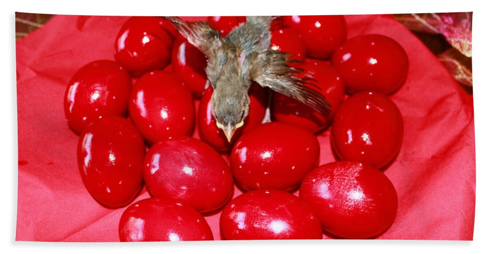 Augusta Stylianou Beach Towel featuring the photograph Flying Over Red Eggs by Augusta Stylianou