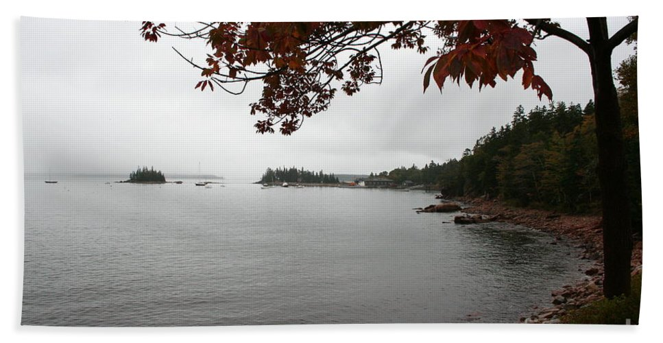 Fog Beach Towel featuring the photograph Foggy Autumn Day by Christiane Schulze Art And Photography
