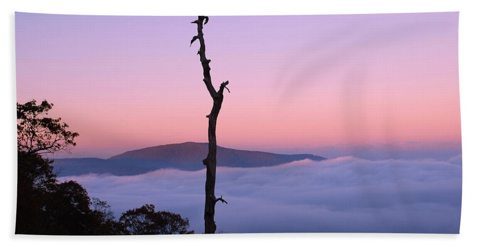 Shenandoah National Park Beach Towel featuring the photograph Foggy Mountain Morning by Francie Davis