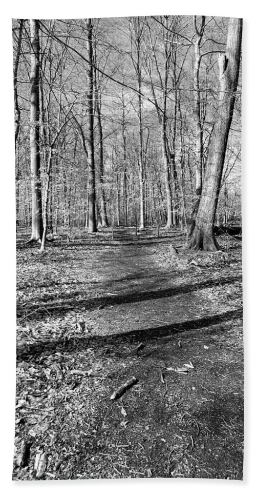 Black Beach Towel featuring the photograph Follow Your Path by Art Dingo